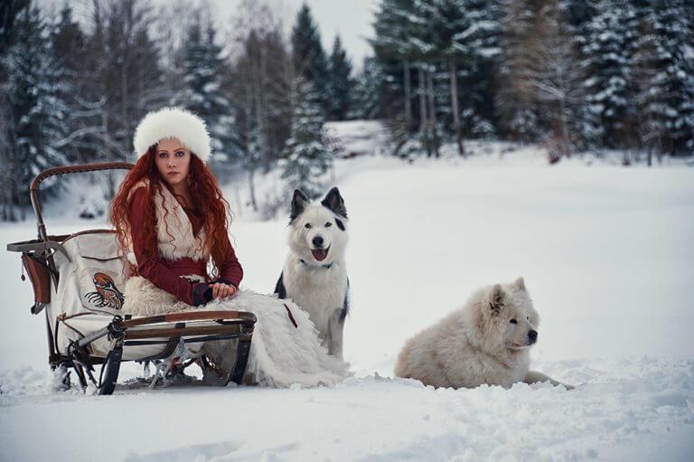 ursula schmitz, photography, portrait, destination photographer, switzerland, dogs, snow, winter wonderland, mountains