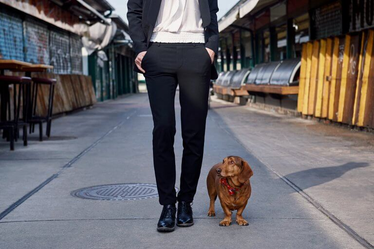 dogue, petphotography, tierfotografie, hund, dackel, wien, vienna, ursula schmitz, portrait, nachschmarkt, dog, doggy, blonde, girl